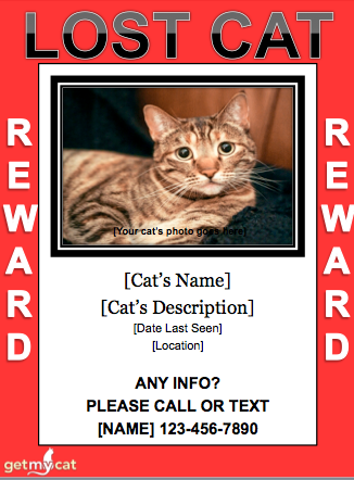 getmycat-Lost-Cat-Flyer-REWARD