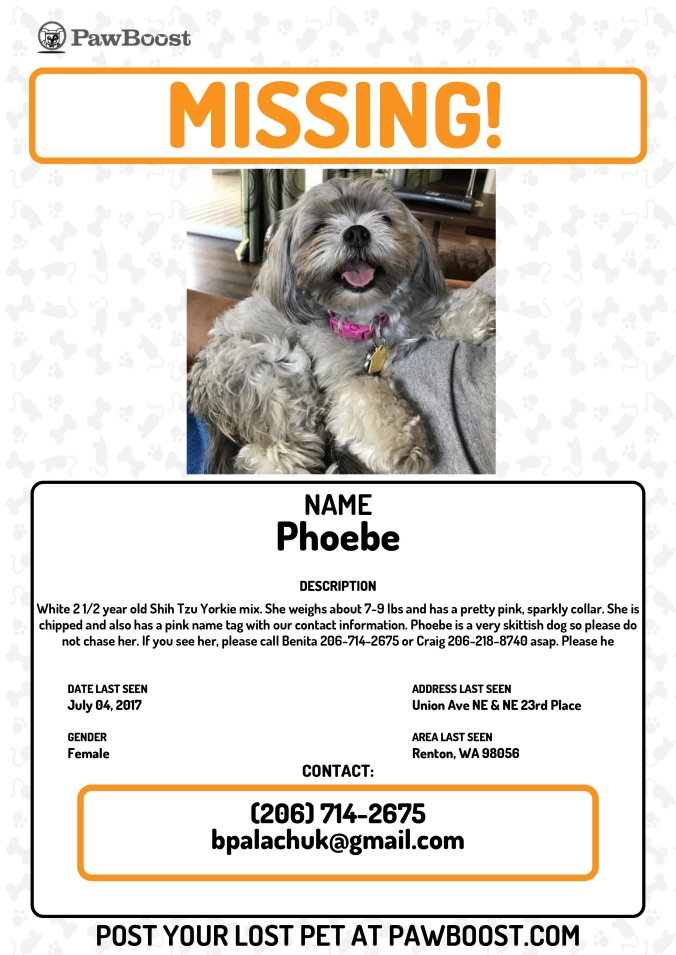 Phoebe New Pawboost Poster