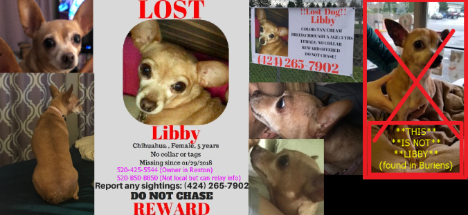 Libby missing.png
